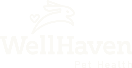 wellhaven logo